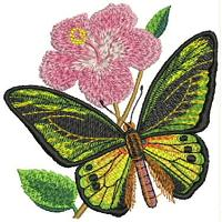 Floral Embroidery Design # FL8